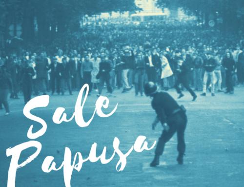 Sale Papusa #22