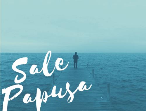 Sale Papusa #25