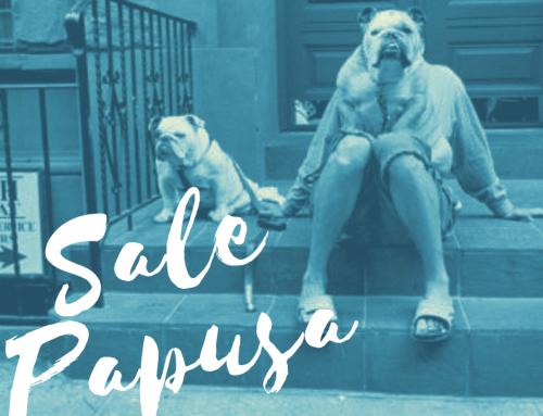 Sale Papusa #29